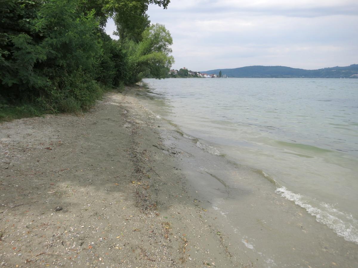 Wilde Badestellen Am Bodensee